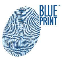 SUBFAMILIA DE BLUE  Blue Print